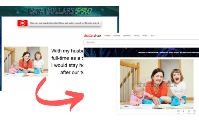 Data Dollars Pro Fake Jenny