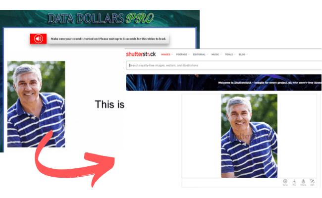 Data Dollars Pro Fake Testimonial