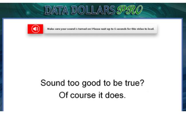 Data Dollars Pro Scam