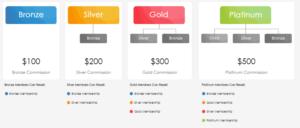 Instant Cash Solution Compensation Plan