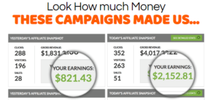 Smash My Campaigns - Earnings Example