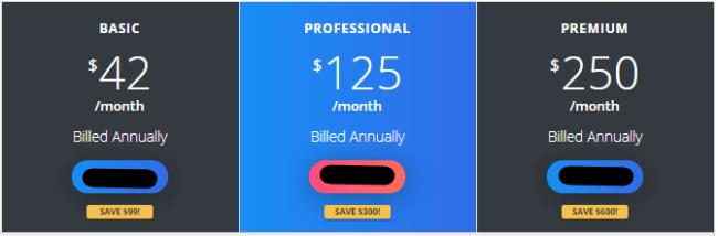 My Lead System Pro Price