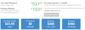My Earnings at Wealthy Affiliate