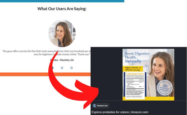Free Turnkey Websites Scam Signal